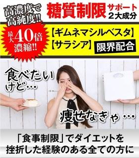 1-ザ・糖質プレミアムダイエット-サラシア.jpg