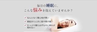 1-テクノジェルの枕.jpg