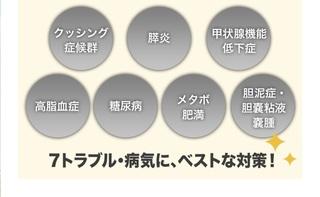 10-犬心-効果.jpg
