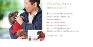 11-カナガンドッグフード-.jpg