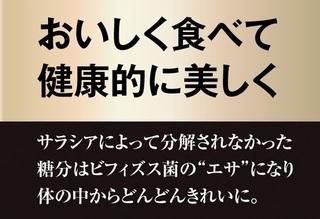 12-ザ・糖質プレミアムダイエット.jpg