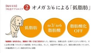 12-犬心-ペット.jpg