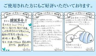 13-IGLOO-表紙.jpg