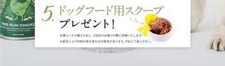 15-カナガンドッグフード-.jpg