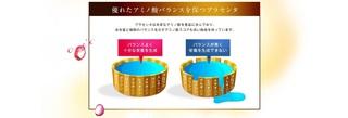 17-プラセンコンクフォースキンの栄養バランス.jpg