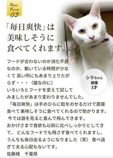 17-獣医師推奨の猫用「毎日爽快」-購入.jpg
