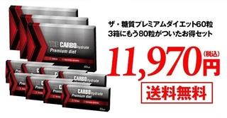 18-ザ・糖質プレミアムダイエット.jpg