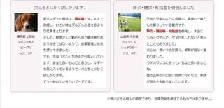 18-犬心-評判.jpg