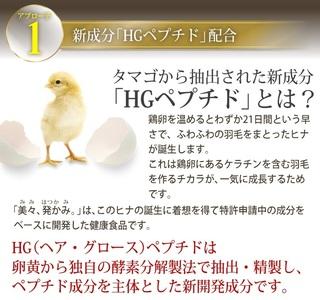 19-美々、発かみ-鶏卵.jpg