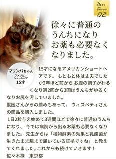 21-獣医師推奨の猫用「毎日爽快」-評判.jpg