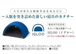 3-IGLOOと枕.jpg