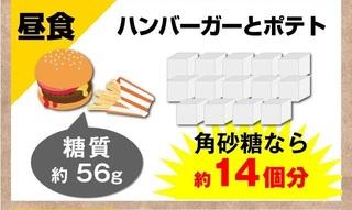 5-ザ・糖質プレミアムダイエット-高濃度.jpg