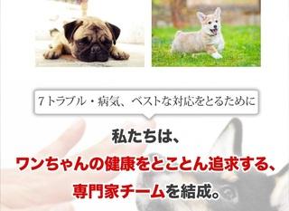 6-犬心-キャットフード.jpg