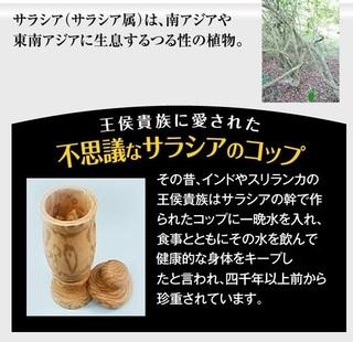 8-ザ・糖質プレミアムダイエット-通販.jpg