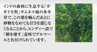 9-ザ・糖質プレミアムダイエット-口コミ.jpg