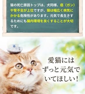 9-獣医師推奨の猫用「毎日爽快」-サプリメント.jpg
